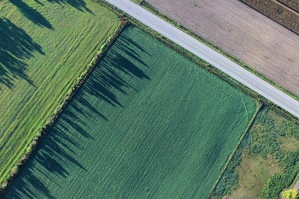 Maanparannusaine-viljelykäyttöön